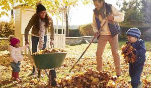Conseils pour l'entretien automnal de votre maison