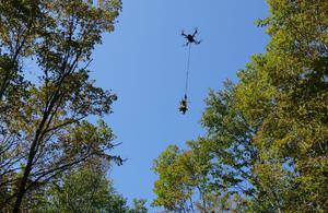 Soigner la forêt par voie aérienne