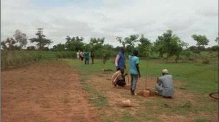 Association Vergers d'Afrique : un verger, une famille, un re...