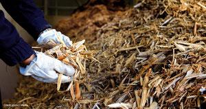 Énergie biomasse: savoir caractériser et utiliser efficaceme...